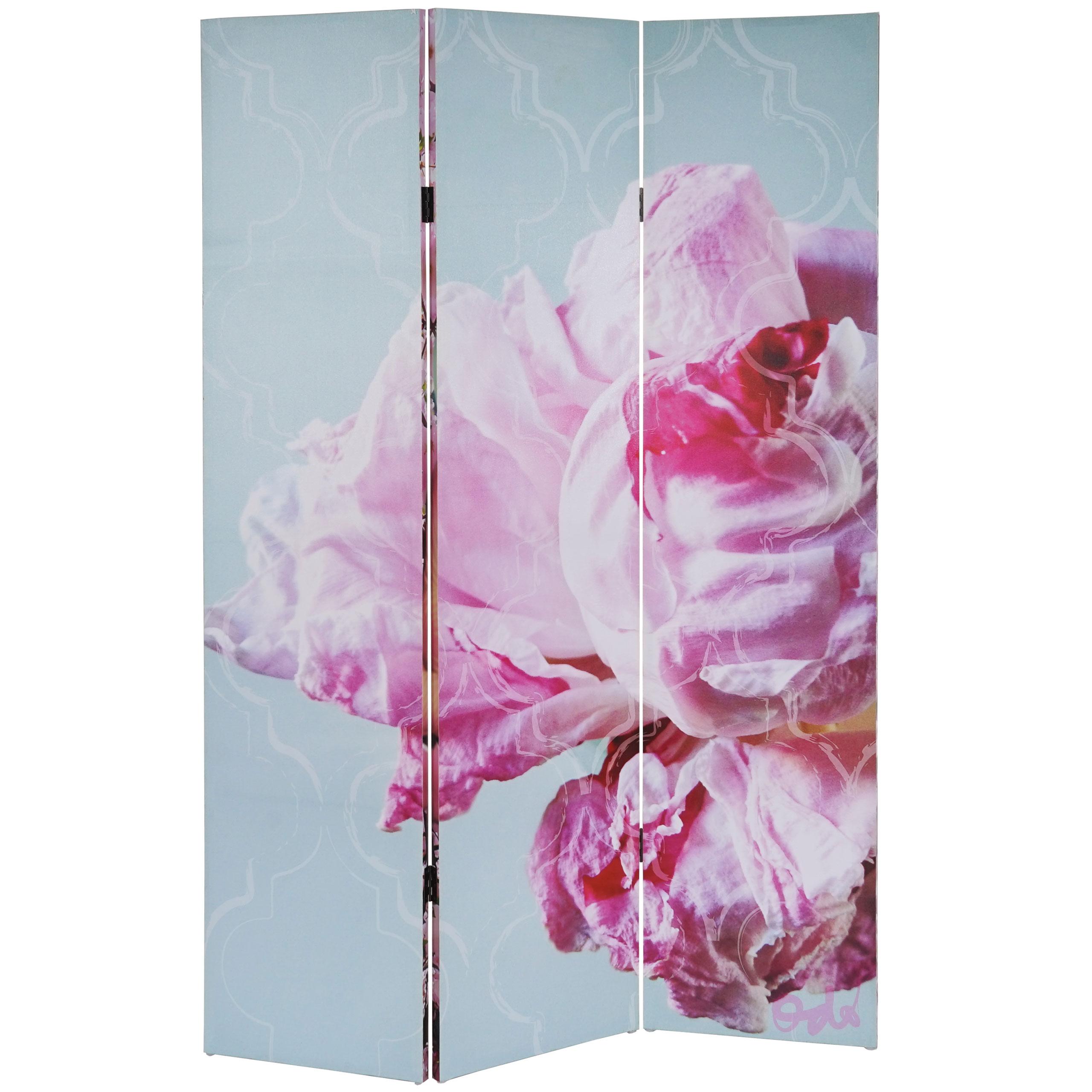 foto paravent t233 paravent raumteiler spanische wand 3. Black Bedroom Furniture Sets. Home Design Ideas