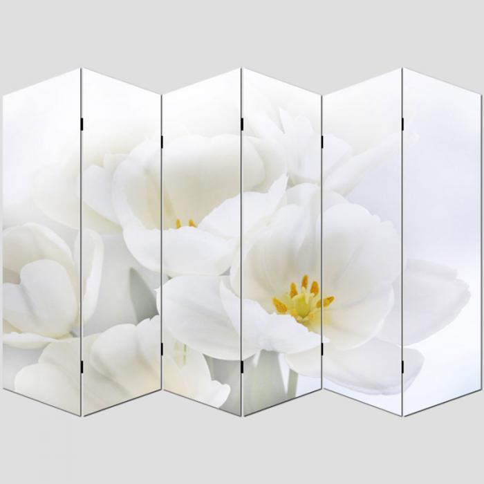 Foto Paravent Paravent Raumteiler Trennwand M68 180x240cm Orchidee
