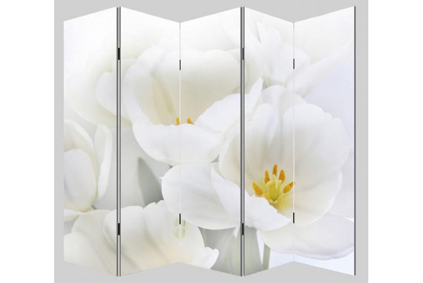 foto paravent paravent raumteiler trennwand m68 180x200cm orchidee. Black Bedroom Furniture Sets. Home Design Ideas